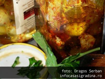 Branza conservata in ulei de masline