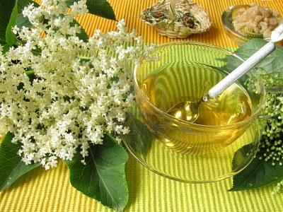 Florile de soc - aroma si sanatate