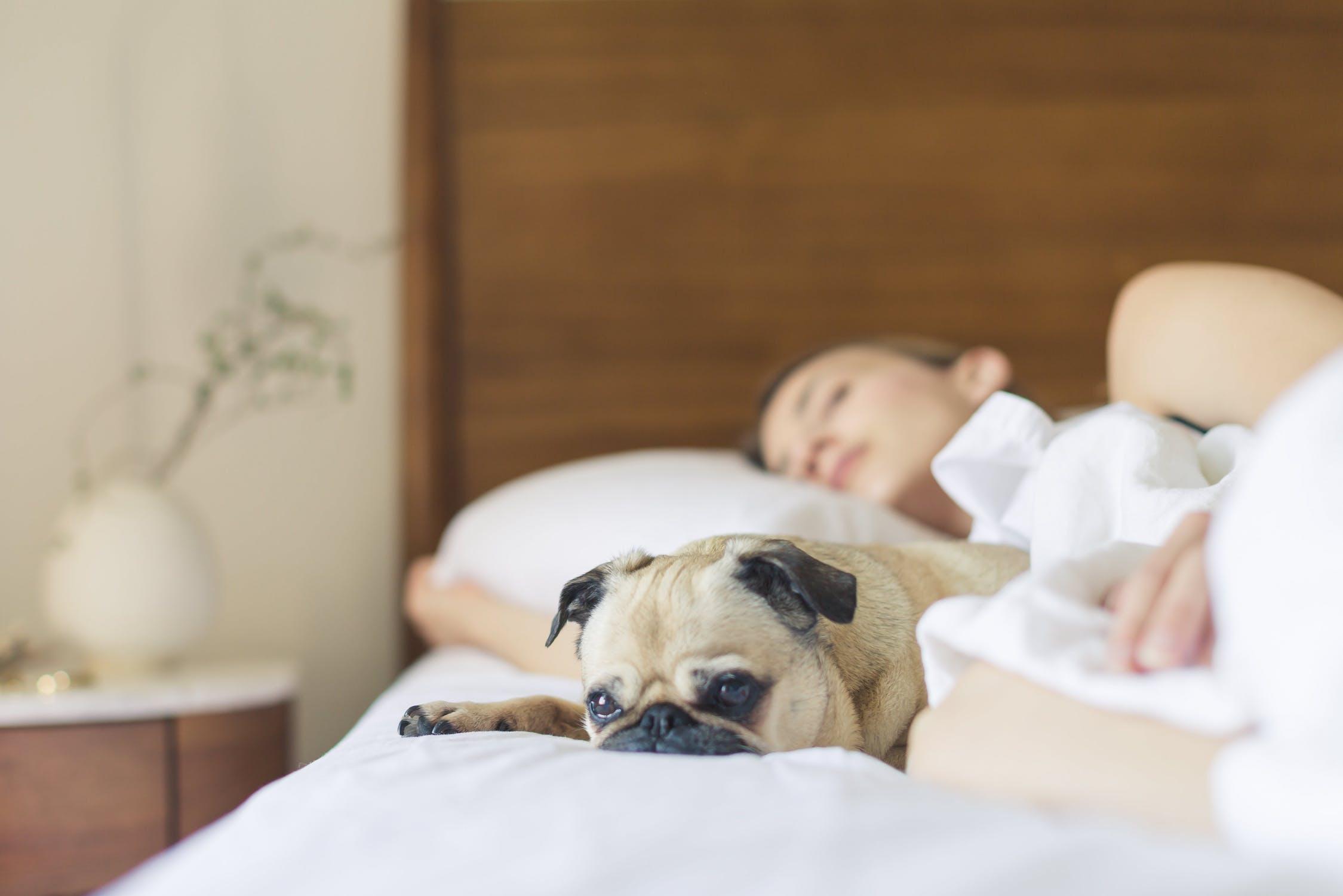 Cum poti obtine un somn bun cand dormi cu altcineva
