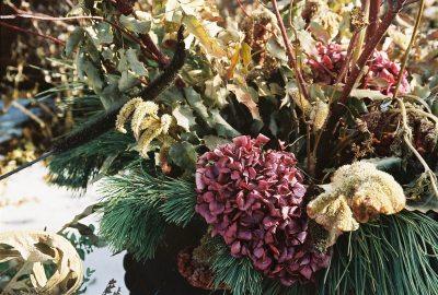 5 moduri de uscare a florilor