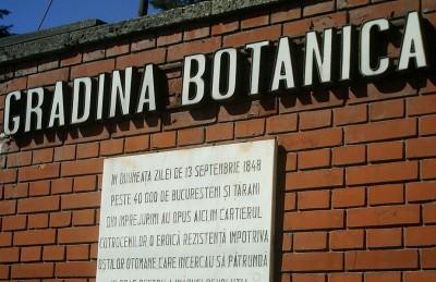 Culorile toamnei la Gradina Botanica din Bucuresti
