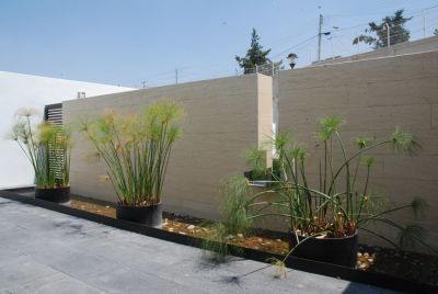 Amenajarea gradinii in stil minimalist