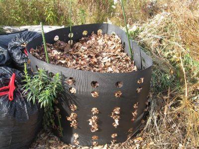 Folosirea frunzelor uscate pentru compost