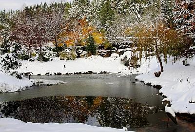 Pregatirea iazului pentru iarna