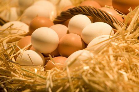 Cum verificam daca ouale sunt proaspete