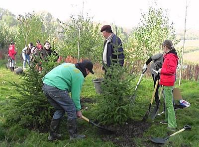 Elevii au plantat pomi, duminica, intr-un parc bucurestean